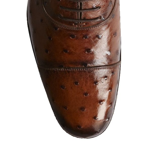 Genuine Ostrich Leather Mens Shoes - brown, front